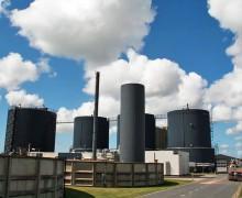 Biogas kan være med til at redde kloden